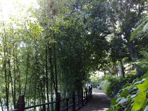 Lake Shrine Temple Gardens, Sunset Boulevard