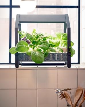 Indoor Gardening at IKEA