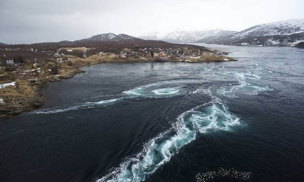 The latest Nordic television hit: live-streamed sea | The Guardian