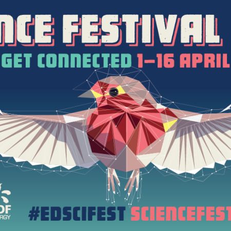 Science Festival 2017