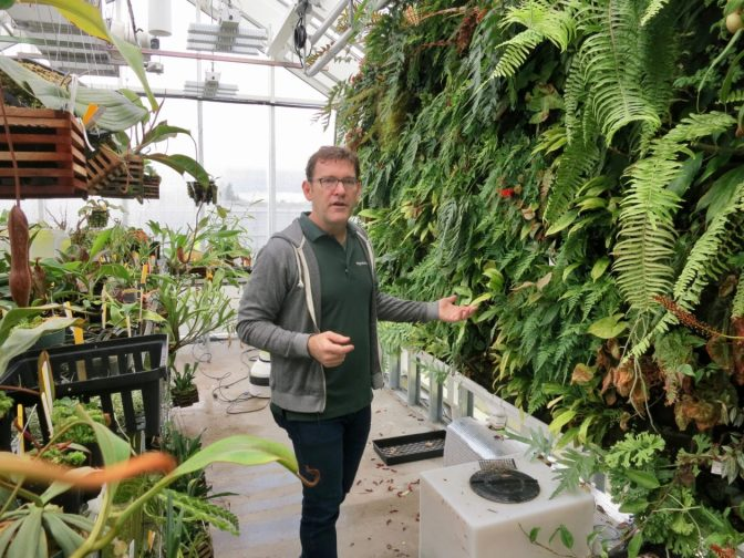 Amazon's growth on full display in greenhouse where exotic plants are raised for its Spheres – GeekWire
