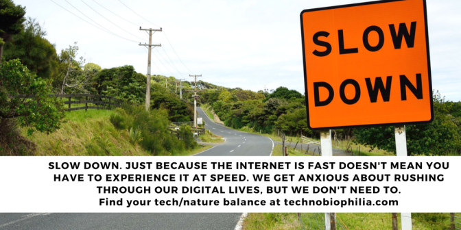 TIP: Slow down. Just because the internet is fast doesn't mean you have to speed too.