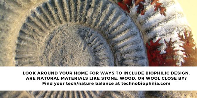 Use stone for interior biophilic design TIP 3/7 Series 2